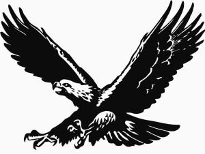 Falcon original no lettering 2010 Phil
