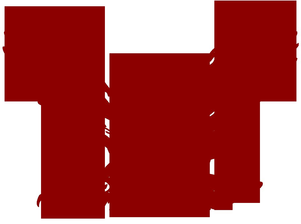 Original Team Logo (Maroon)